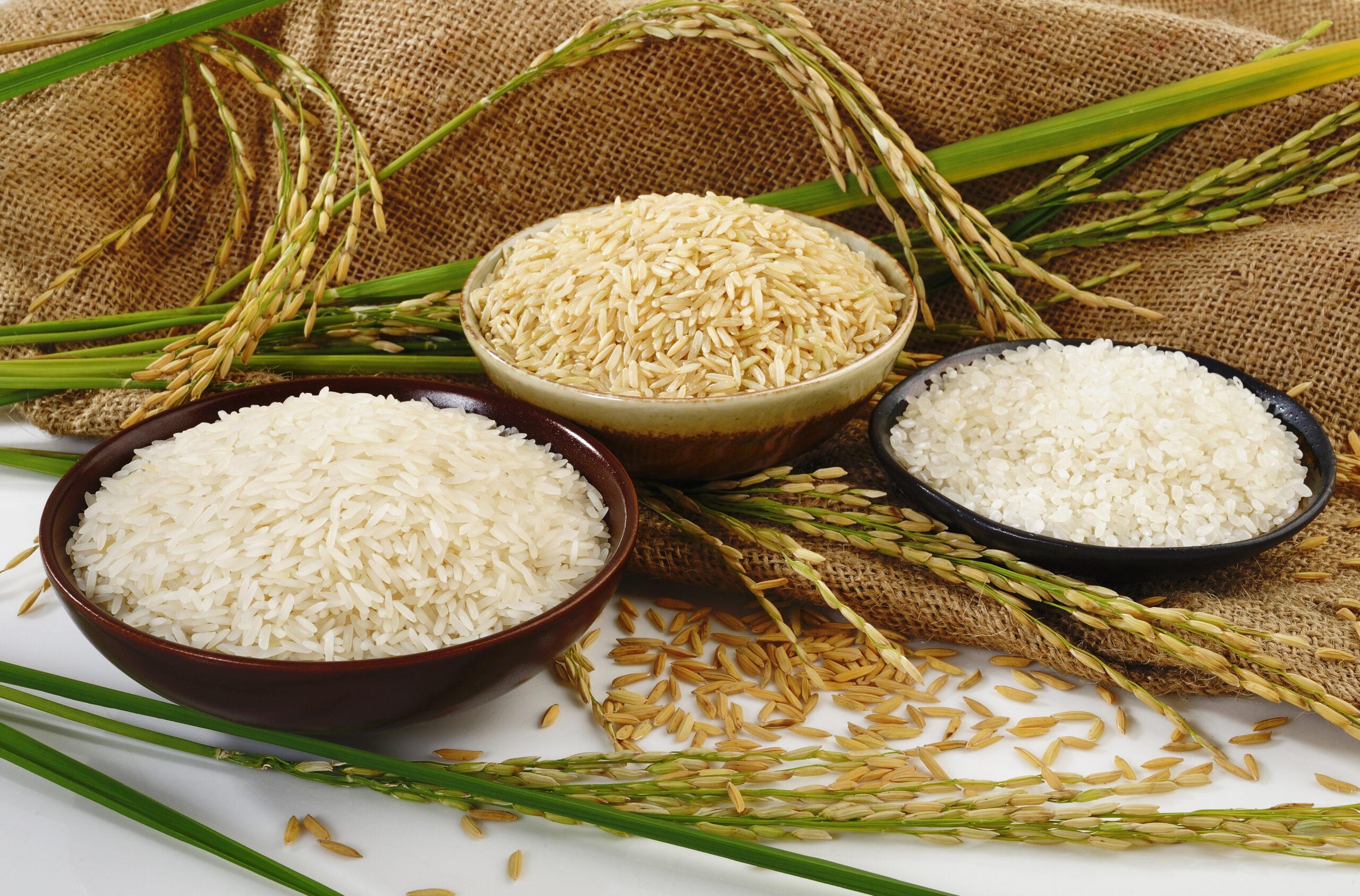 Крупа Рис